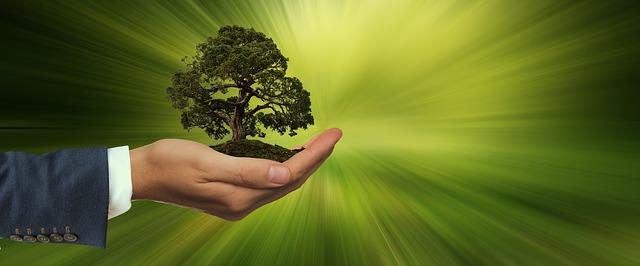Motiveer je personeel tot een groenere leefstijl